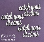 "CATCH YOUR DREAMS - inscriptions ""catch your dreams"""
